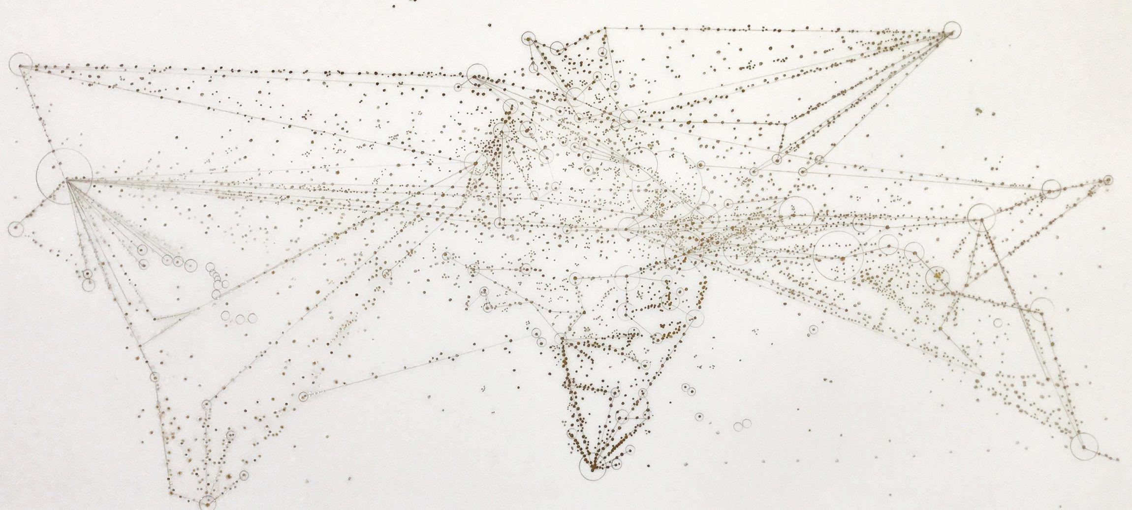 'Making Migration Visible: Traces, Tracks & Pathways' image